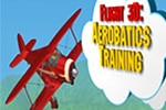 flight 3d_ aerobatics